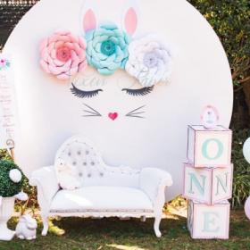 bunny set2